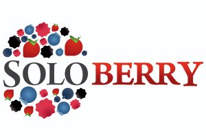 Solo Berry